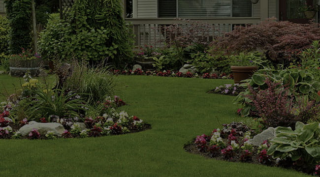Dilworth Landscape Design